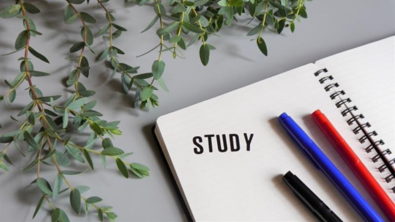 英語の勉強での英語力のイメージ